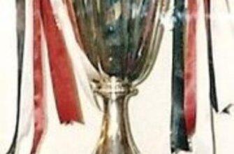 Кубок обладателей кубков УЕФА