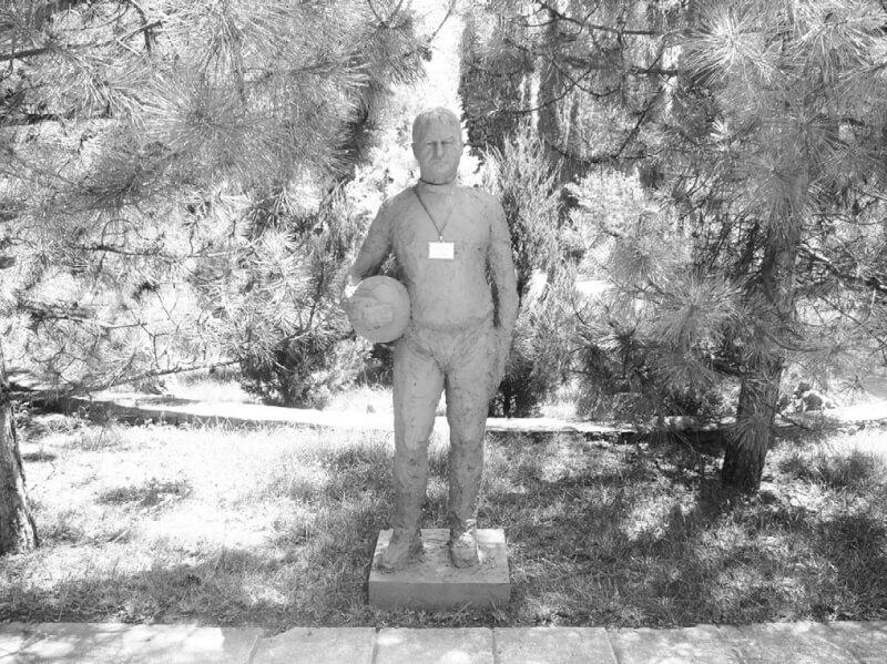 Гус Хиддинк: памятник