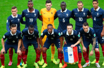Сборная Франции на чемпионате мира 2014 года